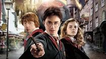 Para Pemain Harry Potter Akhirnya Reuni Online