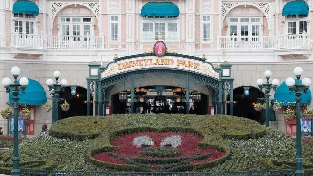 Gara-gara Pil LSD, Pria Ini Ditemukan Telanjang di Disneyland