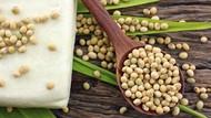 7 Makanan untuk Penderita Anemia, yang Harus Dikonsumsi dan Dihindari