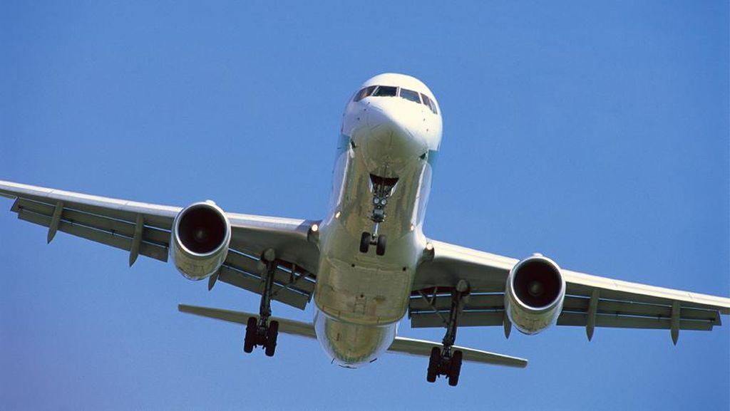 Bupati Aceh Besar Minta Maskapai Setop Penerbangan Saat Idul Fitri-Idul Adha