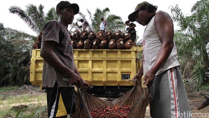 Foto: Febri Angga Palguna