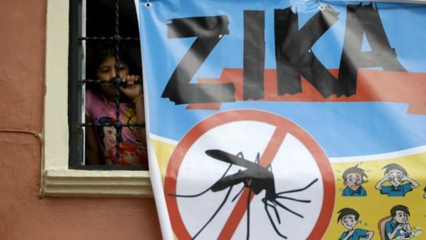 Februari: WHO Tetapkan Wabah Zika Keadaan Darurat Global