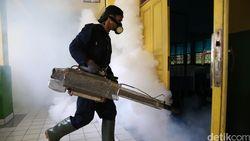 Bukti Terkuat Zika Sebabkan Penyakit Saraf Ditemukan Ilmuwan Prancis