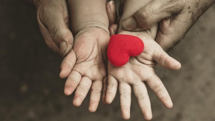 ilustrasi jantung anak