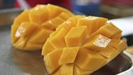 Tips Bikin Mango Sago Sendiri di Rumah