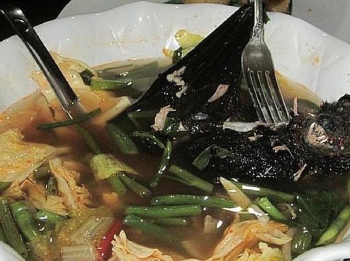 Surat Al Maidah Ayat 3 Atur Makanan Halal Dan Haram Sup Kelelawar Masuk Yang Mana