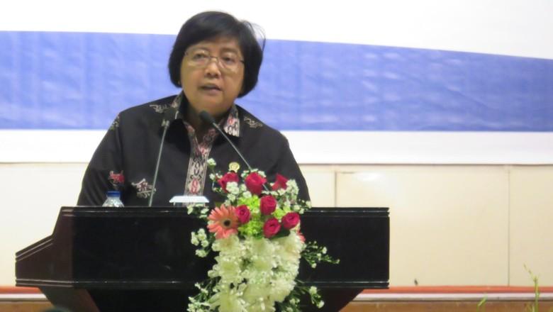 Menteri LHK Minta Penambangan Emas di Kabupaten Buru Dihentikan