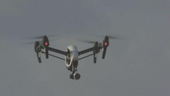 Peneliti Gunakan Drone untuk Selamatkan Habitat Penyu di Queensland
