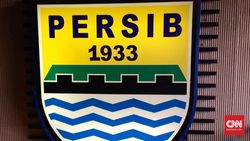 Merger Perserikatan dan Galatama, Awal Era Liga Indonesia