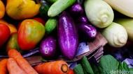 6 Restoran untuk Traveler Vegetarian di Jakarta