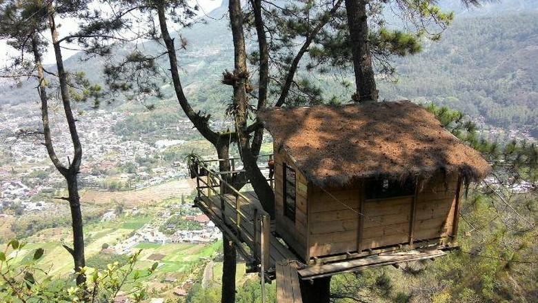 Foto: Pemandangan spektakuler dari Omah Kayu (dok. Omah Kayu)