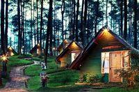 3 Fasilitas Wisata Grafika Cikole Lembang, Kamu Nggak akan Nyesel!