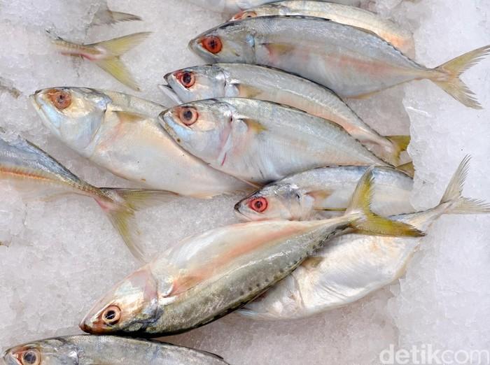 Pilih ikan sehat dan segar untuk dikonsumsi. Foto: Ari Saputra