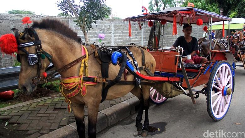 Pemprov Larang Delman Operasi di Sekitar Pacuan Kuda Pulomas