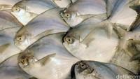 Ditemukan China di Seafood Asal Indonesia, COVID-19 Menular Lewat Makanan?