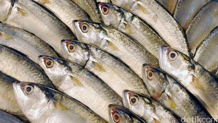 Ikan segar siap olah