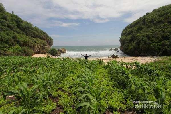 Pantai Kayu Arum, Gunungkidul