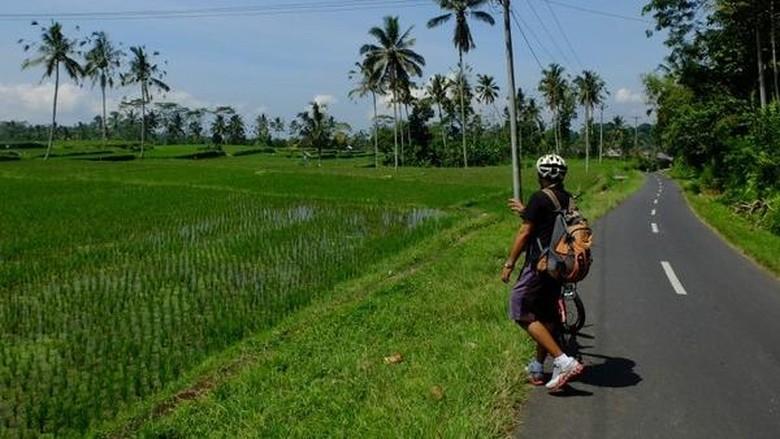 Gianyar akan jadi lokasi Bali Marathon 2016 (Sastri/detikTravel)
