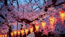 Tokyo Sepi Sampai 12 April