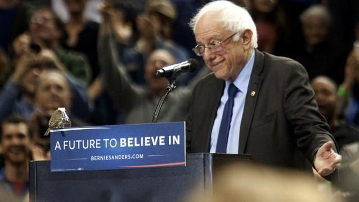 Pilpres AS : Bernie Sanders menang di Washington dan Alaska