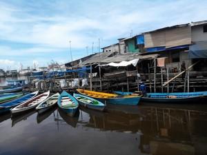 Berbahaya, Patin Vietnam Dilarang Masuk ke AS dan Eropa