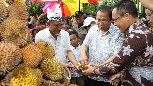 Durian Merah Magnet Agro Wisata Banyuwangi