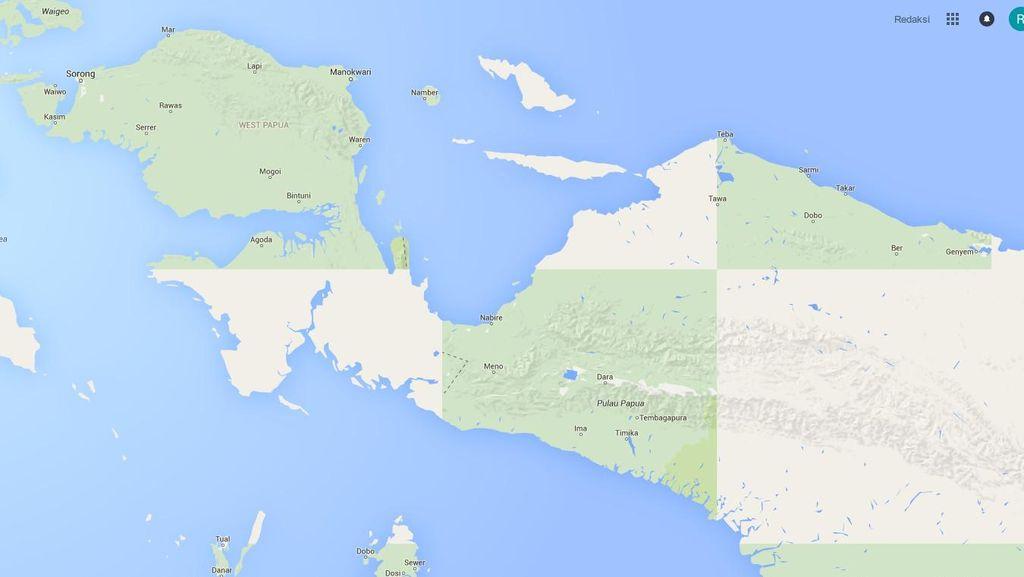 Flora dan Fauna Tumbuh Pesat di Papua Sepanjang 20 Tahun Terakhir