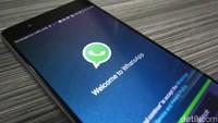 Forward Pesan WhatsApp Akan Cuma Bisa Sekali dalam Sewaktu