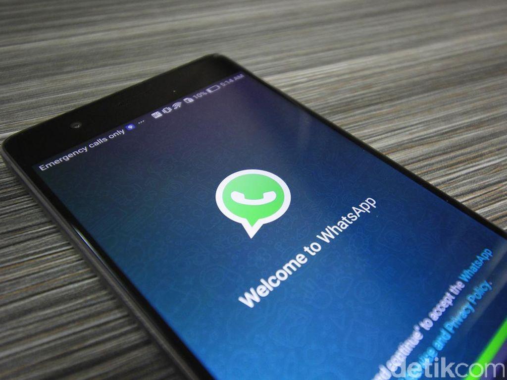 WhatsApp Buka Pengaduan untuk Perangi Hoax