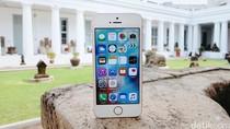 Apple Obral iPhone SE, Harganya Lebih Murah dari Pocophone