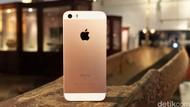 Apple Sulit Memikat Pasar India, Kenapa?