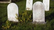 Ribuan Makam Tanpa Nama Ditemukan di Kanada, Diduga Korban Genosida