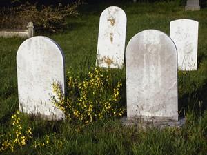 Demi Konten, YouTuber Nekat Kubur Diri Hidup-hidup di Dalam Peti Mati
