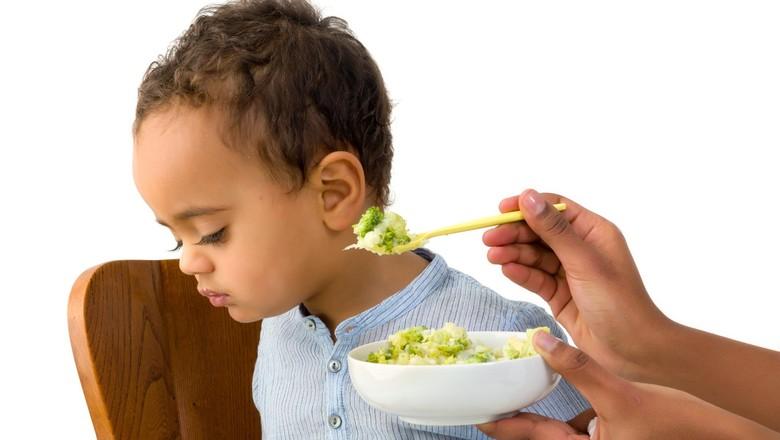 Siapa yang Anaknya Susah Makan? Yuk Konsultasikan di Sini/ Foto: Thinkstock