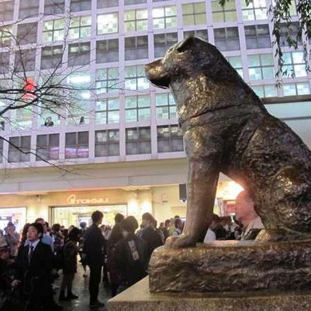 Kesetiaan Anjing Hachiko yang Melegenda di Stasiun Shibuya