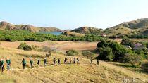 Terkait Rencana Pembangunan di TN Komodo, Ketahui Dulu Zonasinya
