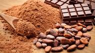 Ini Fakta Cokelat di Indonesia yang Perlu Kamu Tahu