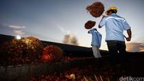 Harga Biodiesel Turun Jadi Rp 7.600/Liter