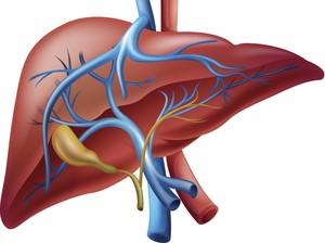 5 Makanan dan Minuman Terbaik untuk Liver yang Sehat