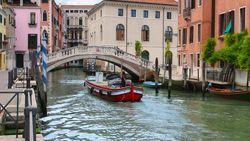 Video: Viral! Munculnya Lumba-lumba di Kanal Venesia