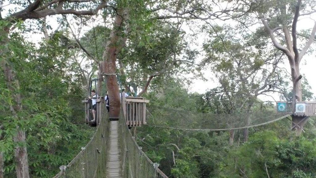 Melirik Potensi Wisata di Ibu Kota Baru Bagian Kutai Kartanegara