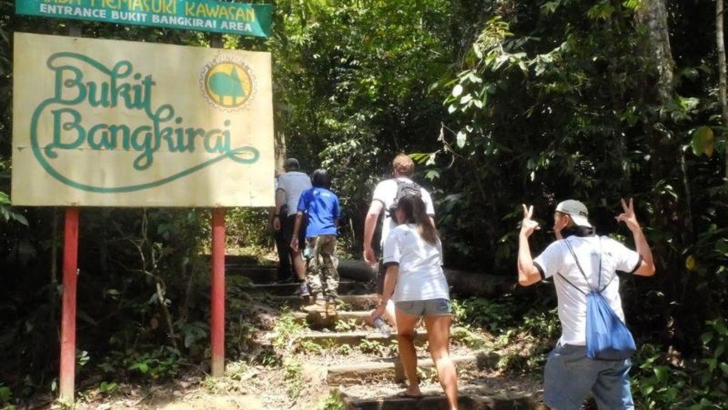 Inikah Calon Kebun Raya di Ibu Kota Baru?