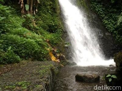 Kelola 2 Taman Nasional di Sukabumi, Pemerintah Perlu Lakukan Ini