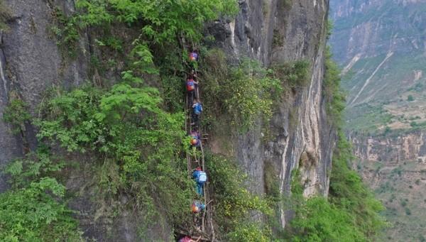 Foto itu menampilkan 15 anak sekolah dengan usia paling muda sekitar 6 tahun memanjat tangga menjalar di sebuah tebing (Foto: Beijing News/Chen Jie)