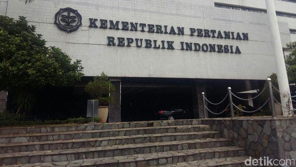 Laporan Keuangan Kementan WTP, Mentan: Oleh-oleh Idul Fitri