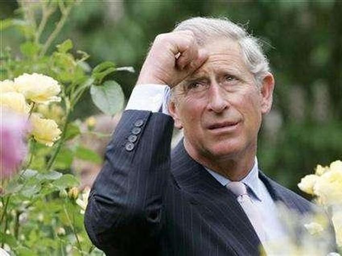 Pangeran Charles. Foto: Reuters