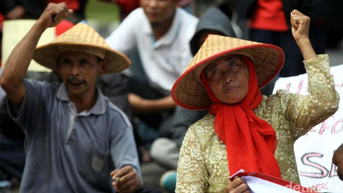 Ilustrasi Petani Foto: Agung Pambudhy
