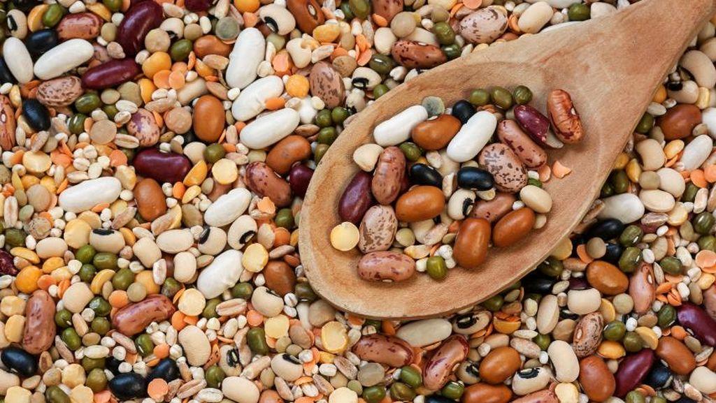 Kacang-kacangan Bisa Jadi Sumber Asupan Nutrisi yang Murah