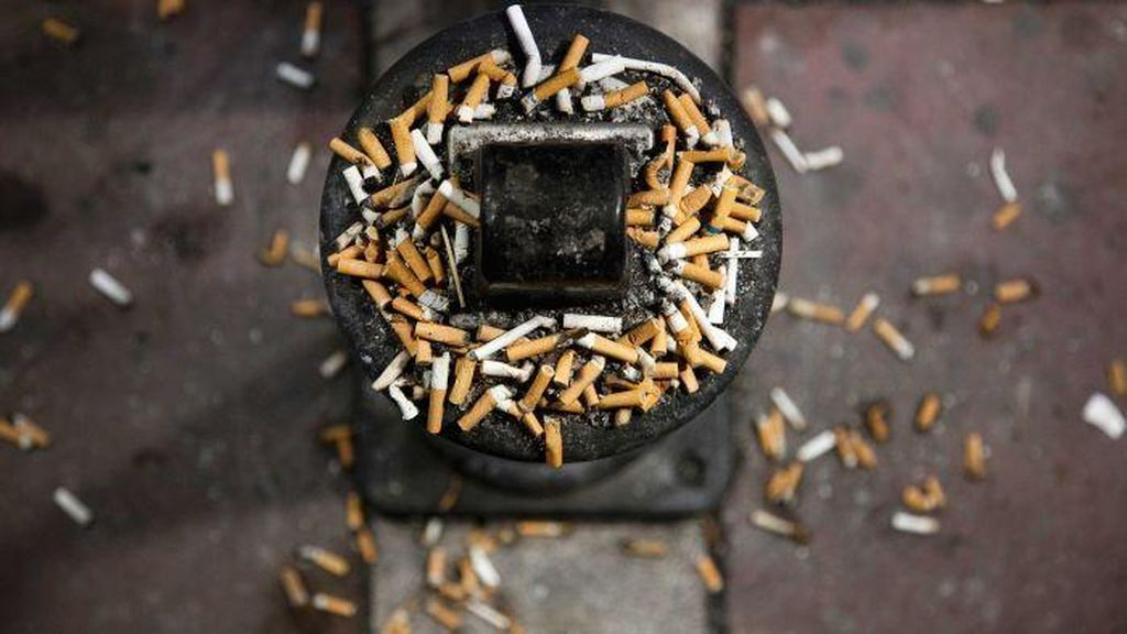 Buang Puntung Rokok, Sabri Jadi Tersangka Kebakaran Hutan
