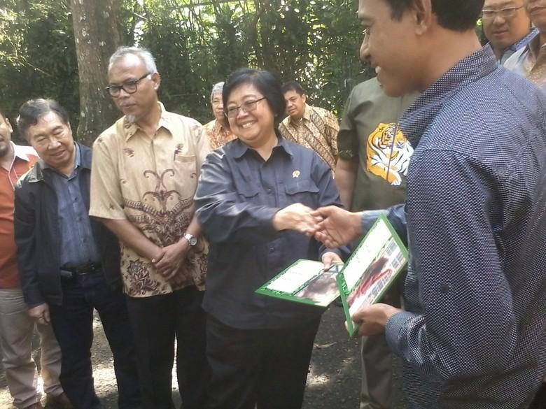 Menteri LHK: Masyarakat Kembalikan 100 Jambul Kuning, 22 Dilepas di Papua